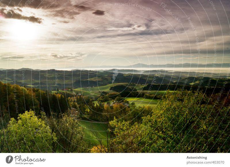 schöne Aussichten Umwelt Natur Landschaft Pflanze Erde Himmel Wolken Horizont Sonne Sonnenaufgang Sonnenuntergang Sonnenlicht Sommer Wetter Schönes Wetter Baum