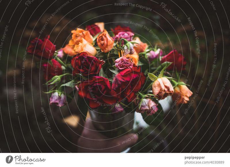 verwelkter Blumenstrauß verwelkte Blumen verwelkte pflanze Pflanze Blüte Natur Farbfoto Frühling Nahaufnahme Dekoration & Verzierung vergangene zeiten