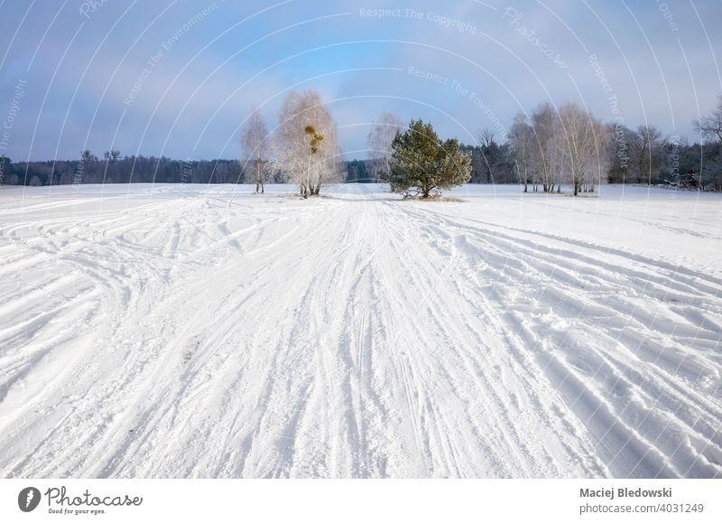 Winterlandschaft mit Landstraße mit Schnee bedeckt. Natur Landschaft Wald Straße Baum Weg Laufwerk reisen Ausflug kalt weiß Saison keine Menschen Himmel Wildnis