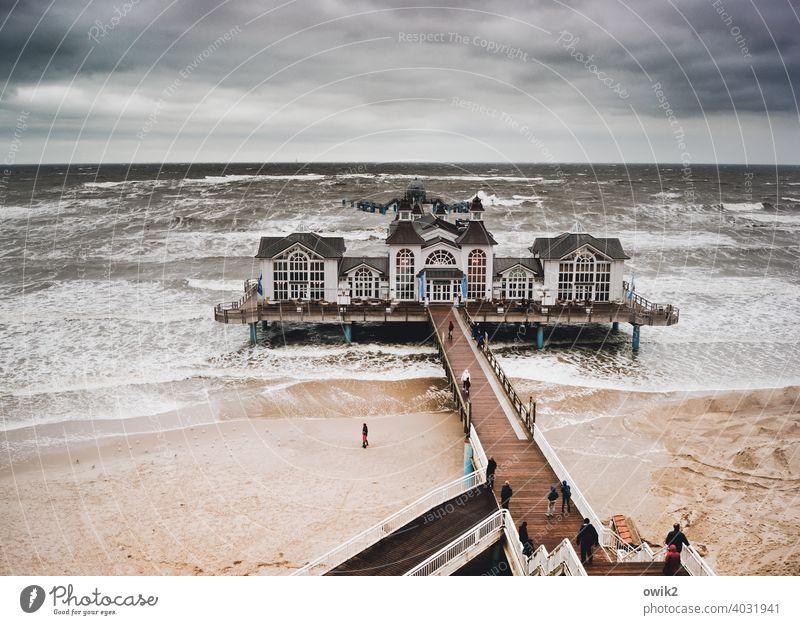 Hoch im Norden Sellin Seebrücke Wahrzeichen Sehenswürdigkeit Idylle Bauwerk Gebäude Rügen Ostsee Strand Küste Horizont Wolken Himmel Wasser Sand Landschaft Holz