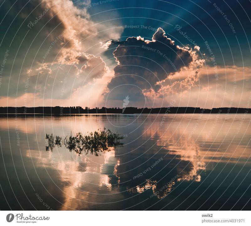 Immer dasselbe Landschaft Himmel Natur Spiegel Wolken See natürlich Perspektive Aussicht Wasser Sonnenuntergang Hintergrundbeleuchtung Licht dramatisch
