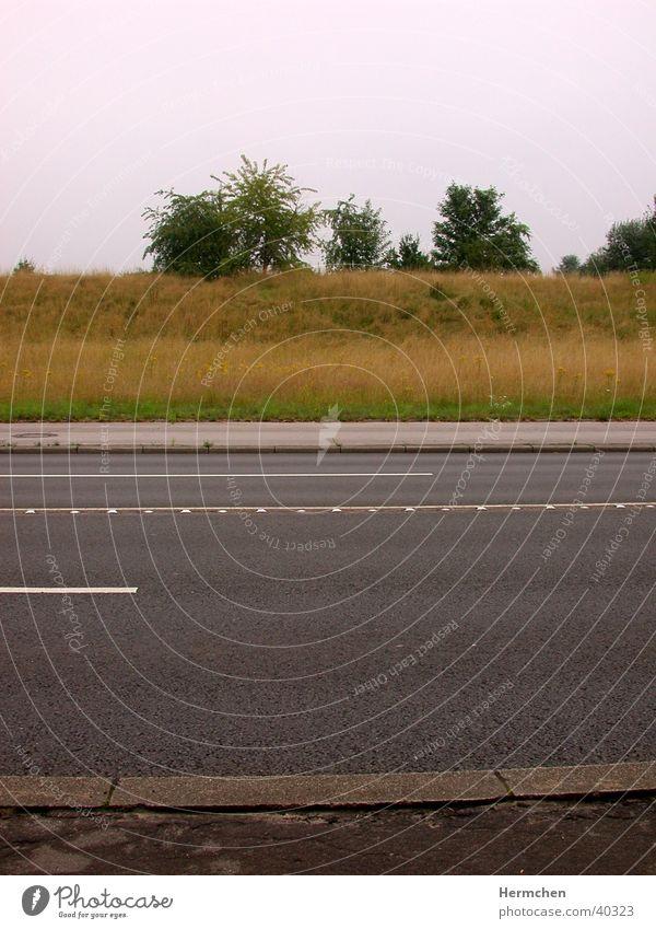 horizontale Straße Sommer Straße Graffiti Asphalt parallel Überqueren