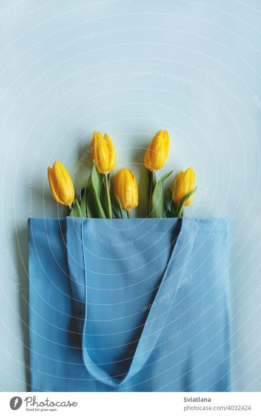 Ein Blumenstrauß aus gelben Tulpen auf blauem Hintergrund mit Platz für Text. Ansicht von oben. Valentinstag, Frauentag, Muttertag schön Frühling Natur Feiertag