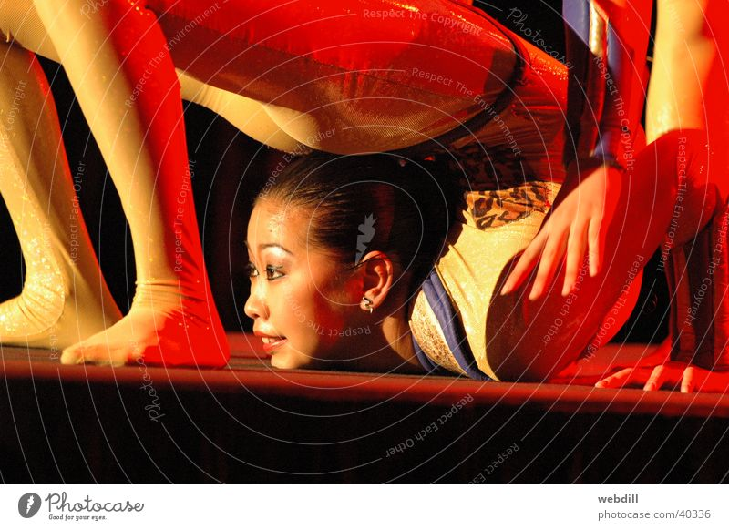 Schlangenmenschen Frau Artist Zirkus Knoten