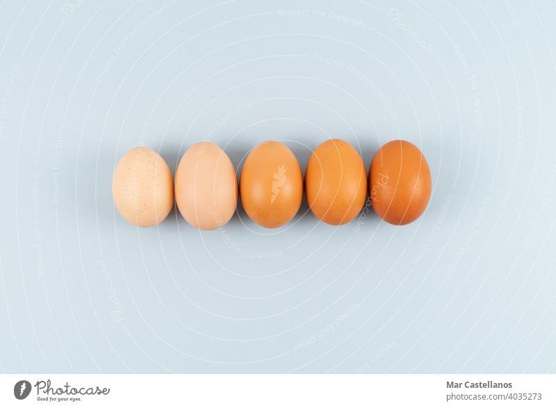 Eier mit verschiedenen Farbtönen in einer Reihe auf blauem Hintergrund. Platz zum Kopieren. Ostern Blauer Hintergrund Textfreiraum Draufsicht Farbnuancen Küche