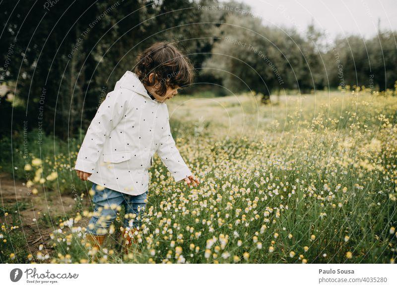 Nettes Mädchen Kommissionierung Frühling wilden Gänseblümchen Frühlingsgefühle Frühlingsblume authentisch Natur Pflanze Farbfoto Blüte Blühend Außenaufnahme