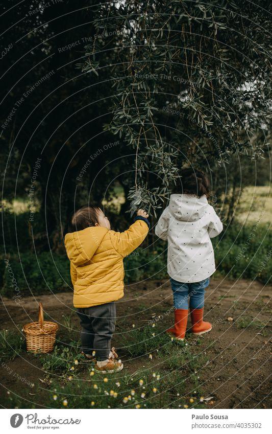 Bruder und Schwester spielen im Freien Geschwister Hermandad Zusammensein Zusammengehörigkeitsgefühl Spielen Frühling Herbst Rückansicht