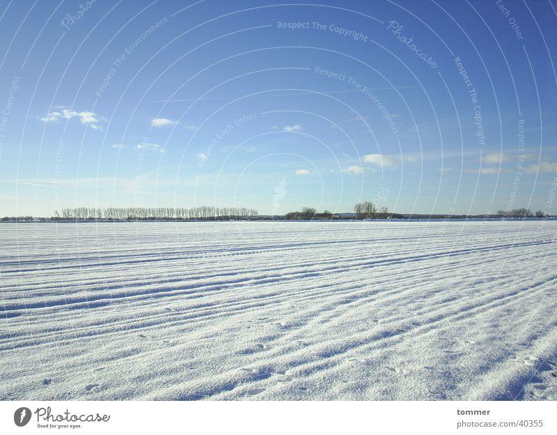 Schneelandschaft Himmel weiß blau Winter Wolken kalt Schnee Spuren
