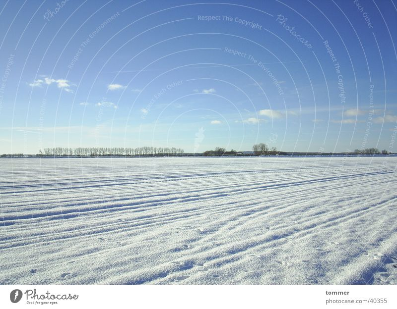 Schneelandschaft Himmel weiß blau Winter Wolken kalt Spuren