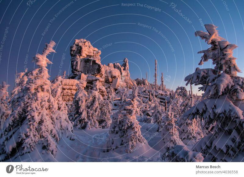 Winterlandschaft im Abendlicht Dreisessel Dreisesselfelsen Felsen Frost Gipfelfelsen Granitfelsen Himmel Nadelwald Waelder Wald Waldgebiet Wiesenlandschaft