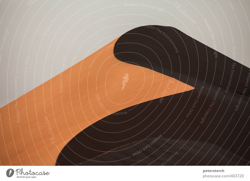 Düne Ferien & Urlaub & Reisen Ferne Natur Landschaft Sand Sonnenlicht Wüste Wahiba Sands ästhetisch elegant schön Wärme Fernweh Einsamkeit rein Symmetrie