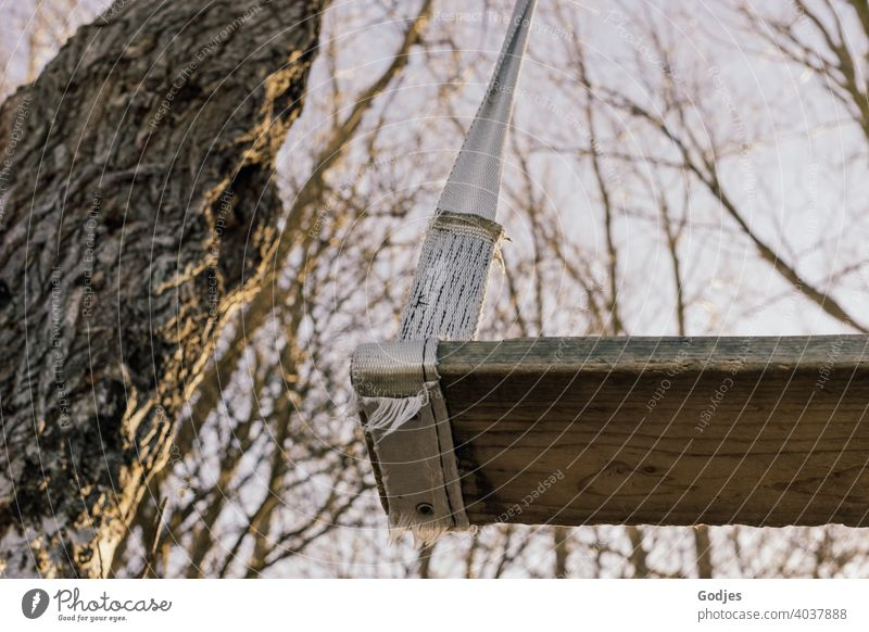 Selbstgebaute Schaukel aus Holz und Spanngurten hängend an einem Baum in der Natur| Corona thoughts Spielplatz Spielen Kind Freude Außenaufnahme Kindheit