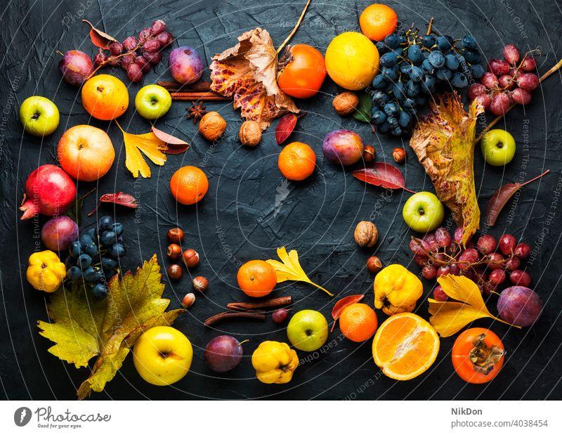Ernte der Herbstfrüchte Frucht reif fallen herbstlich Vitamin Varieté Sammlung Lebensmittel Apfel Traube Oktober Mandarin roh natürlich organisch Saison