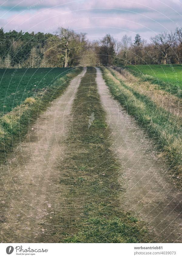 Schmutziger Feldweg zwischen grünen Feldern dreckig Wirtschaftsweg Straße Weg Radweg Fahrradweg Ruhe Winter Deutschland ländlich Landschaft Ackerbau Himmel