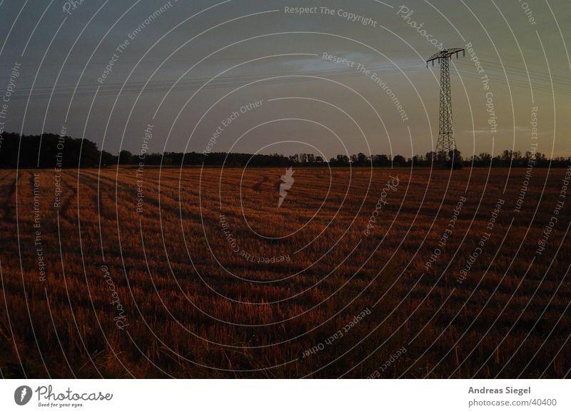 Nacht wird's Sonnenuntergang Feld Waldrand Reifenspuren Strommast Elektrizität Herbst Natur Abend Kabel