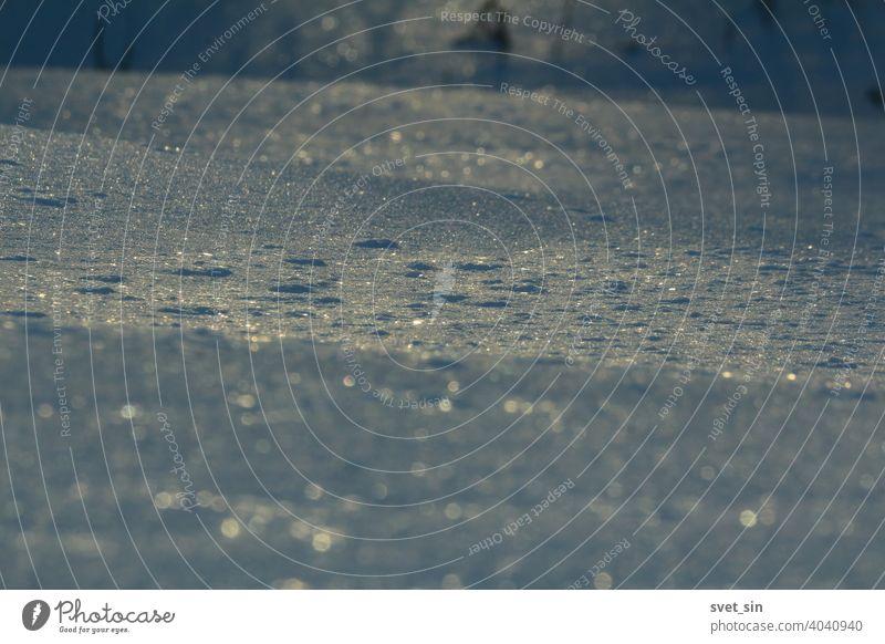 Silber blau glitzernde Schneedecke Nahaufnahme im Winter Abend. Blau leuchtende Schneekruste im Winterwald. abstrakt Hintergrund schön Bokeh hell Weihnachten