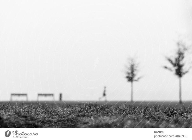 ein verschwommene Szene im Nebel mit Sitzbank, Baum, Joggering, Jogger und Mülleimer Erwachsene Unschärfe laufen Mensch Bewegung Silhouette Minimalismus