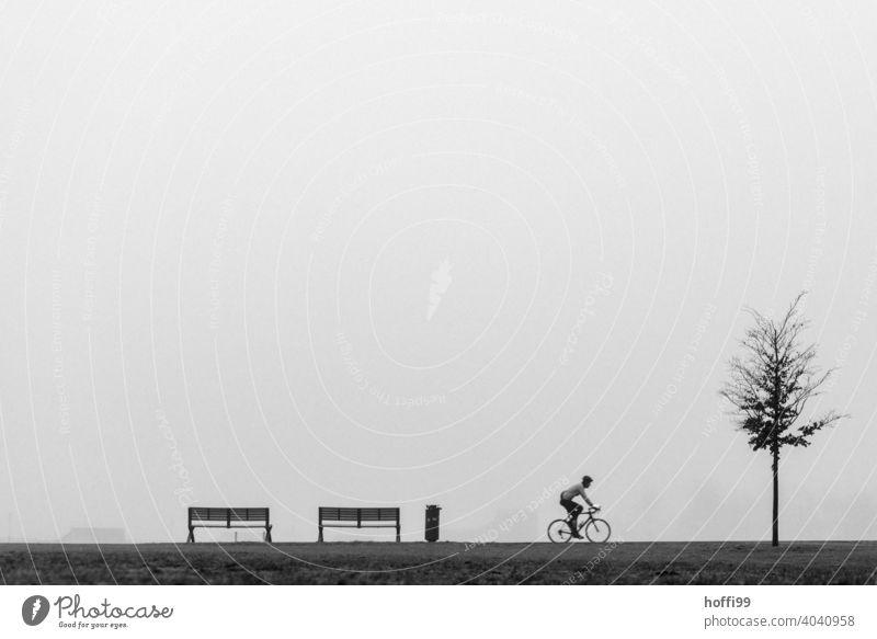 ein Szene im Nebel mit Sitzbank, Baum, Fahrradfahrer und Mülleimer Fahrradfahren Erwachsene Mensch Bewegung Silhouette Minimalismus Rad Nebelstimmung kalt nass