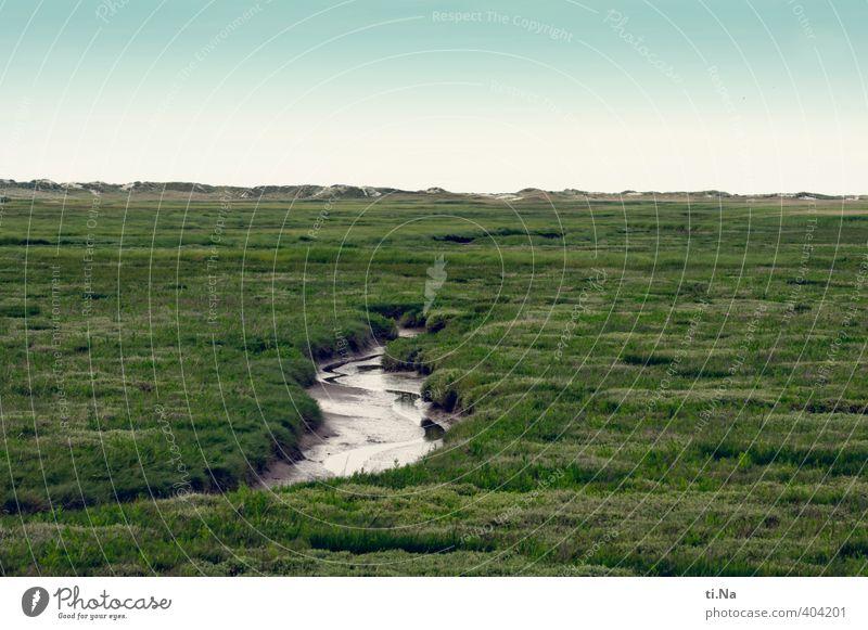SPO | Lebenslauf Natur blau grün weiß Sommer Landschaft schwarz Küste Gras grau natürlich Sträucher Tourismus nass Lebensfreude einzigartig