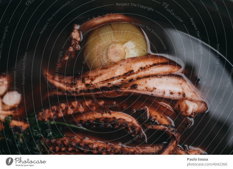 Oktopus kochen Octopus Brühe Essen zubereiten Meeresfrüchte Nahaufnahme Mittagessen Feinschmecker Lebensmittel Speise Tisch frisch Teller Mahlzeit Abendessen