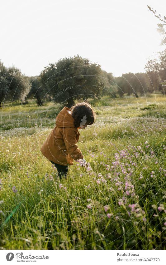 Nettes Mädchen pflückt Frühlingsblumen Kind Kindheit Kaukasier 1-3 Jahre Blumen pflücken Kommissionierung authentisch Umwelt Wiese im Freien Frühlingsgefühle