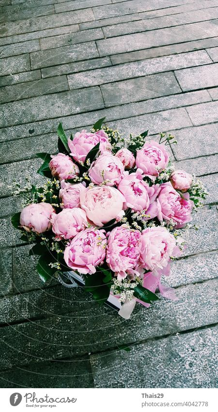Eleganter Strauß von vielen rosa Pfingstrosen, Haufen von frischen schönen rosa Pfingstrosenblüten in voller Blüte, Nahaufnahme, Ansicht von oben. Blumige Sommertextur für den Hintergrund. Frühling blüht.