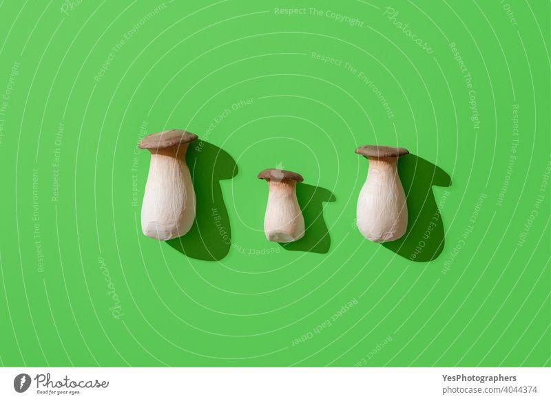Boletus edulis Pilz auf grünem Hintergrund, Ansicht von oben. Essbare Waldpilze, minimalistisch obere Ansicht ausgerichtet Herbst Steinpilz Steinpilze