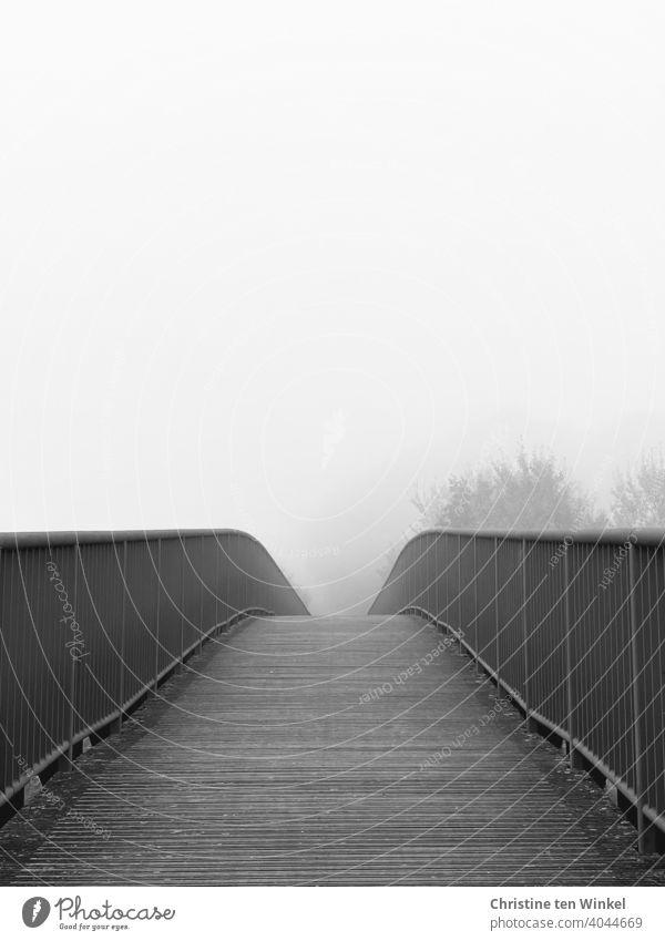 Blick über eine Brücke, der Weg verschwindet im nebeligen Nichts Fußgängerbrücke Fußgängerübergang Wege & Pfade Nebel Nebelstimmung Bäume Nebeltag