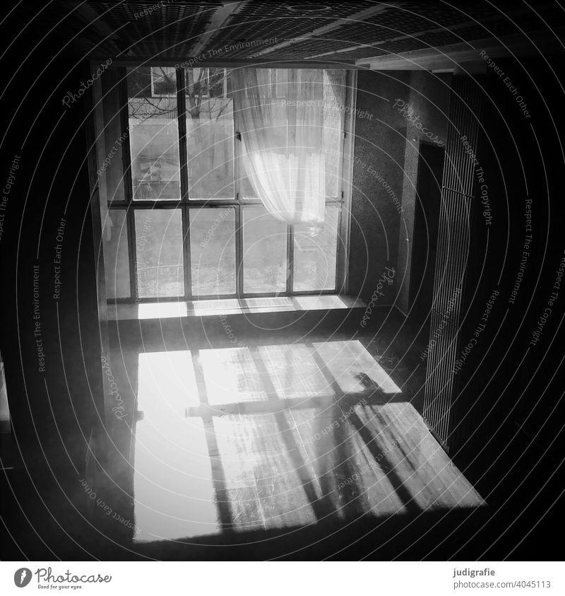 Die Sonne scheint durch ein großes Fenster in einen leer stehenden Raum, die Gardine wirft einen Schatten auf den Boden. Licht heimtextilien Rechteck Acht