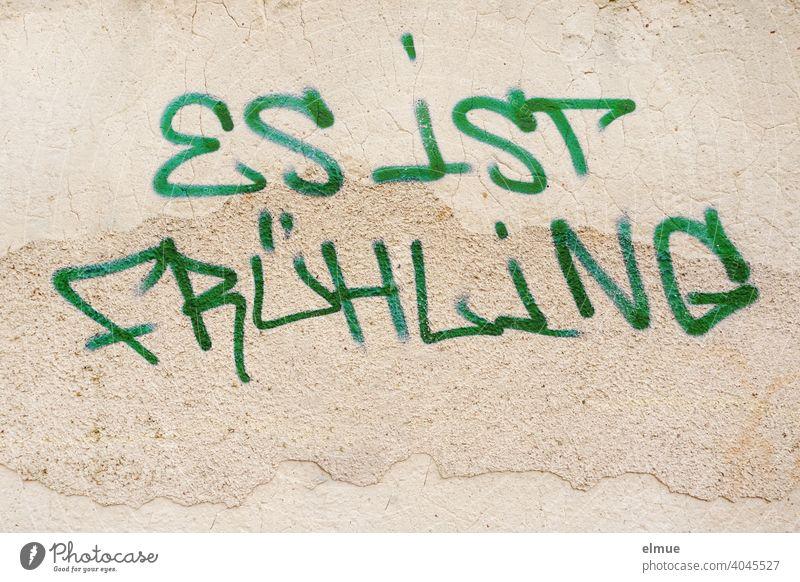 """""""ES IST FRÜHLING"""" steht in Druckbuchstaben und grüner Farbe an der Wand / Graffito / Frühlingsgefühle / Jugendkultur Graffiti Hauswand Schmiererei Blog Text"""