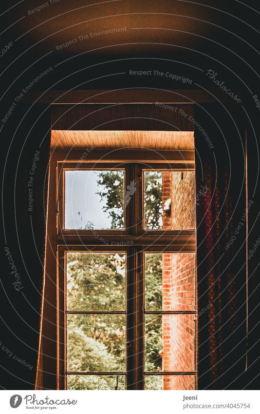 Lichtblick | Ein Blick aus dem Zimmer durch das halb mit der Gardine zugezogene Fenster nach außen Gardinen halb durchsichtig Vorhang Stoff Muster Lichtschein