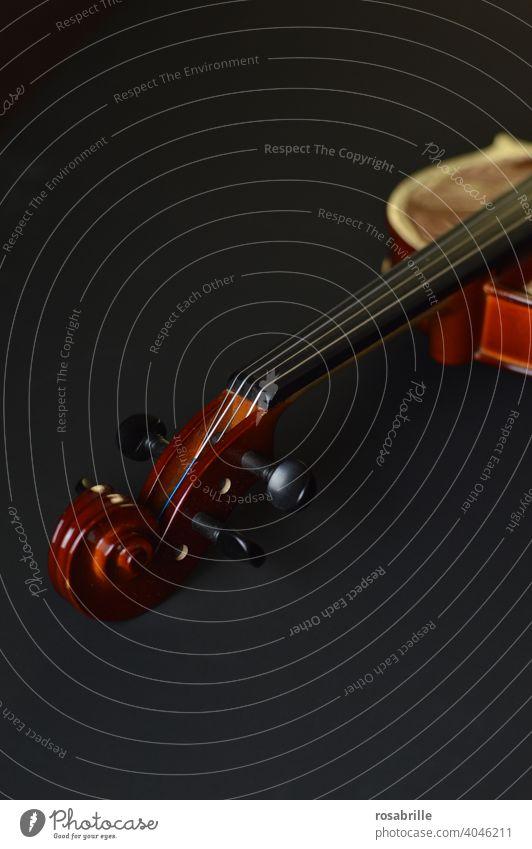Schnecke einer Geige Detailaufnahme Instrument Musikinstrument musizieren klassisch Klassik spielen antik alt Ausschnitt Wirbel Saiten Streichinstrument vornehm