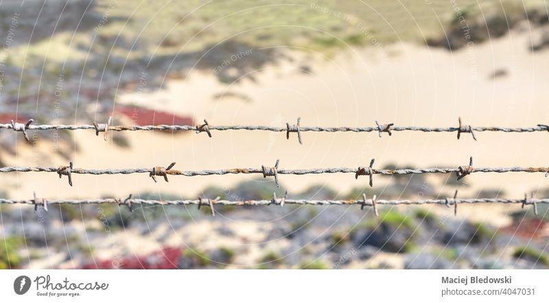Nahaufnahme von rostigem Stacheldraht. Zaun Draht mit Stacheln versehen Barriere Borte Land Gefängnis Schutz Wildnis alt im Freien Sicherheit Symbol ländlich