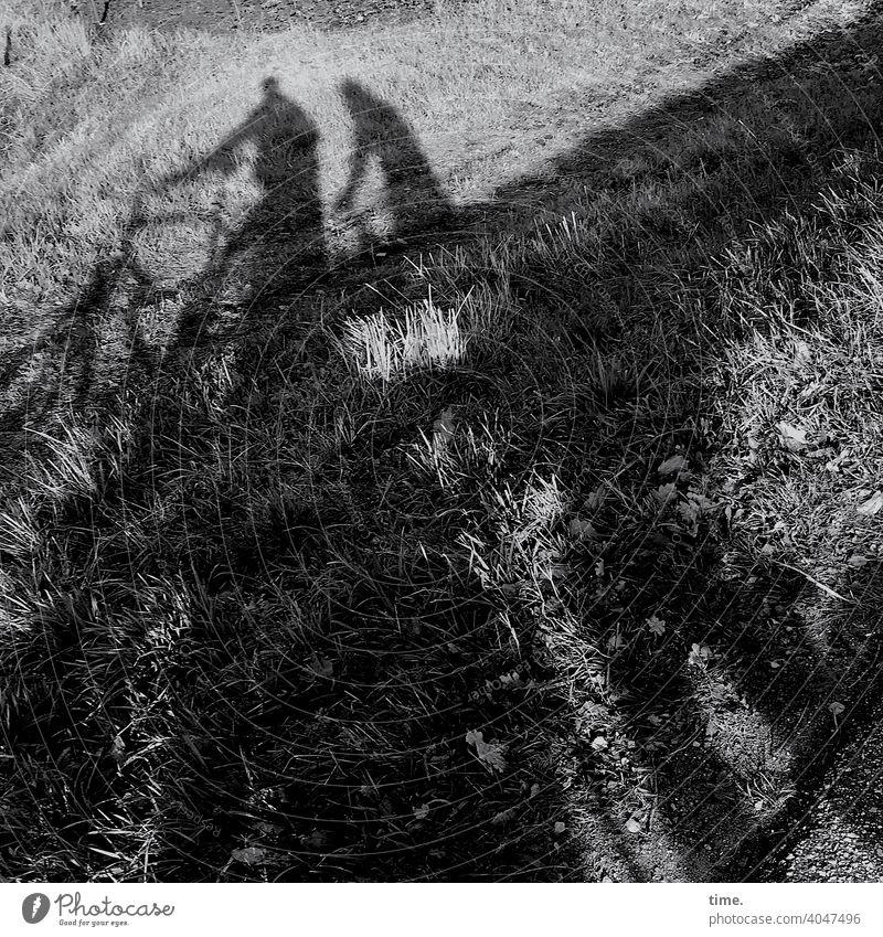 Wiesenkieker silhouette schatten wiese sonnig zwei fahrrad gras Abendsonne stehen schauen ausflug Radfahren unterwegs natur draußen Frau