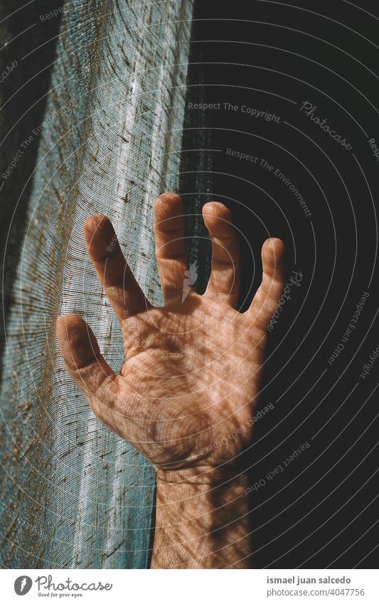 Mann Hand in den Schatten fühlen das Sonnenlicht Licht Silhouette Finger Handfläche Körperteil Handgelenk Arme Haut Person gestikulieren Konzept Symbol