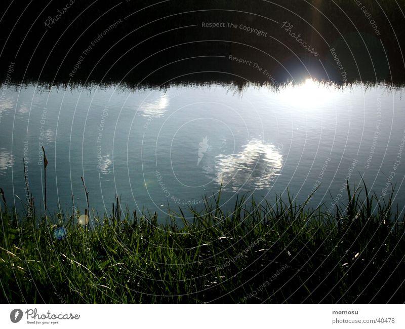 als die sonne ins wasser fiel Wasser Sonne Wolken Gras nass Teich