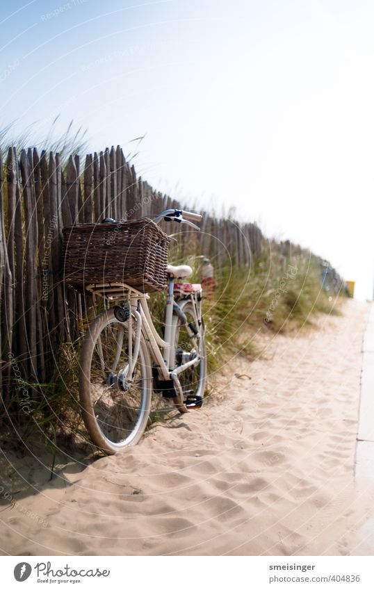 Fahrrad auf Strand Lifestyle Ferien & Urlaub & Reisen Tourismus Freiheit Sommer Sommerurlaub Fahrradfahren Wärme Dürre Sträucher Nordsee Erholung authentisch