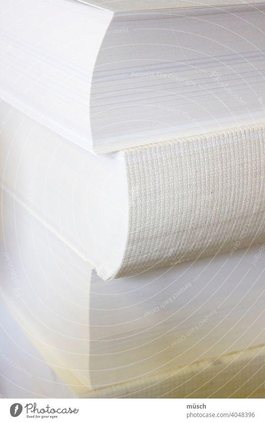 drei Bücher Buch Literatur übereinander Rücken Seiten Gutenberg Bibel Buchbinder Schrift Stapel Handwerk Ausbildung Lehrberuf lumbecken binden weiß Ordnung