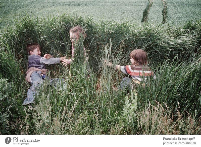 Drei im Feld Mensch Kind Natur Ferien & Urlaub & Reisen Pflanze Sommer Mädchen Landschaft Umwelt Sport Spielen Junge Freiheit Glück Gesundheit natürlich