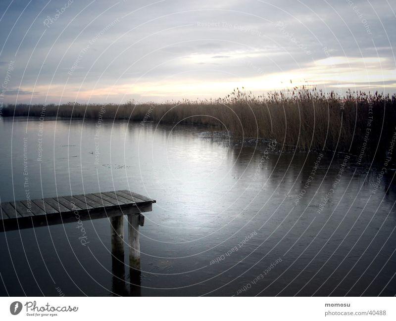 neusiedlersee Rust See Morgen Schilfrohr Neusiedlersee Wasser Steg Morgendämmerung