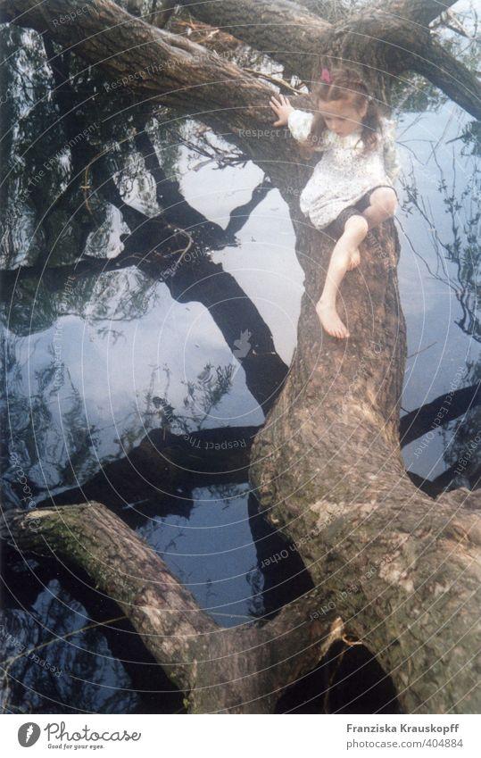 Wasserweide Umwelt Natur Landschaft Pflanze Wolken Sommer Schönes Wetter Baum Seeufer Moor Sumpf Kleid entdecken Erholung Spielen blau braun weiß Sicherheit