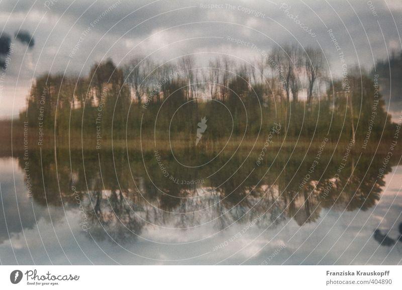 Geuschenberger See Umwelt Natur Landschaft Pflanze Erde Wasser Himmel Wolken Herbst Baum Sträucher Küste Seeufer Menschenleer Stimmung Zufriedenheit Romantik