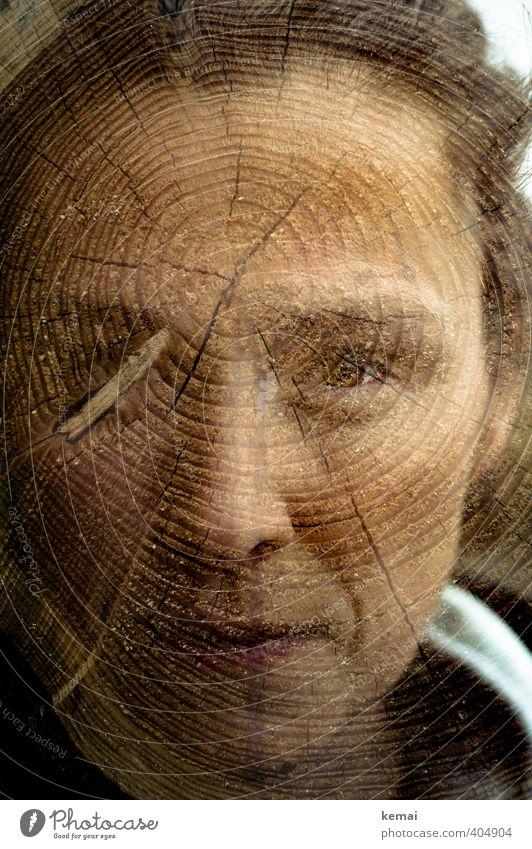 Splitter und Balken Mensch Frau Natur Baum ruhig dunkel Erwachsene Umwelt Auge Leben Gefühle feminin Religion & Glaube Holz Kopf Kraft