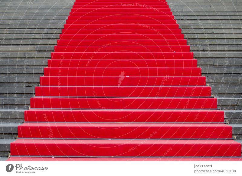 einfach ein roter Teppich Kultur Roter Teppich Treppe seriös Ehre Erfolg Symmetrie Wege & Pfade Stufenordnung Strukturen & Formen Hintergrund neutral