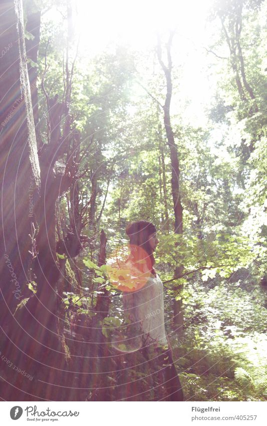 Waldruhe feminin Frau Erwachsene 1 Mensch 18-30 Jahre Jugendliche stehen beobachten Sommer Hippie Tattoo Natur Warmherzigkeit Baum ruhig verträumt träumen