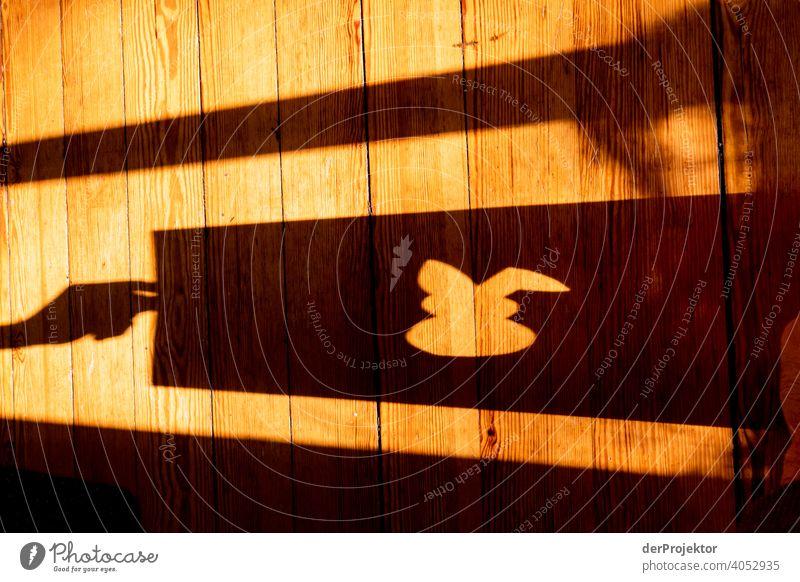 Schatten vom gerahmten Osterhasen mit Boden im Hintergrund Ostern ostereier Ostermontag Ostergeschenk Osterwunsch osterwetter Osterei Ei Dekoration & Verzierung