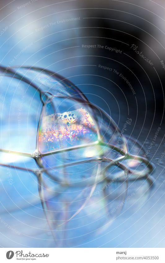 Dezentes Farbgeflüster beim Kuscheln der Seifenblasen Zusammensein glänzend dünn einzigartig mehrfarbig Lebensfreude skurril Partnerschaft Team regenbogenfarben