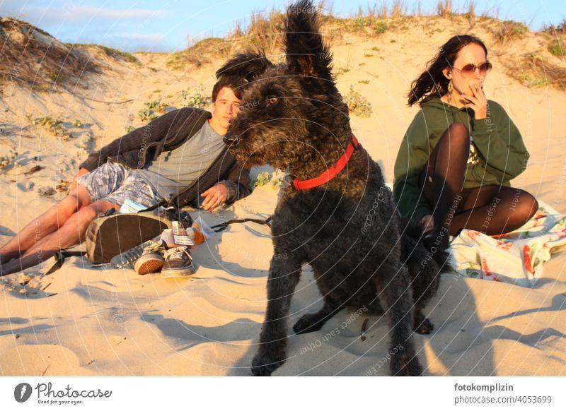 zwei Jugendliche mit Hund in einer Sanddüne Teenager chillen relaxen entspannen Freundschaft Zusammengehörigkeitsgefühl schauen Ferien & Urlaub & Reisen Strand