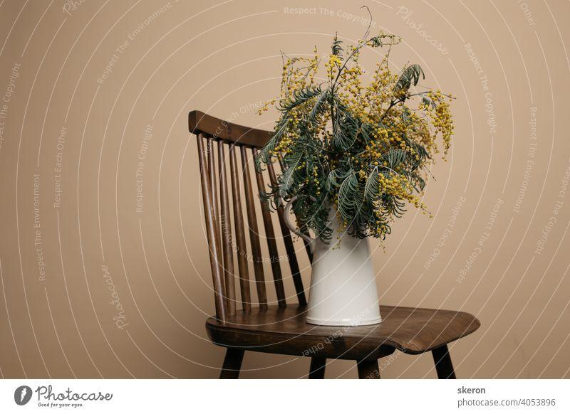 Frühling duftenden Blumenstrauß von Mimosen in einem keramischen Vintage-Krug auf einem Papier farbigen Hintergrund. Grußkarte zu Ehren von Muttertag oder Valentinstag.