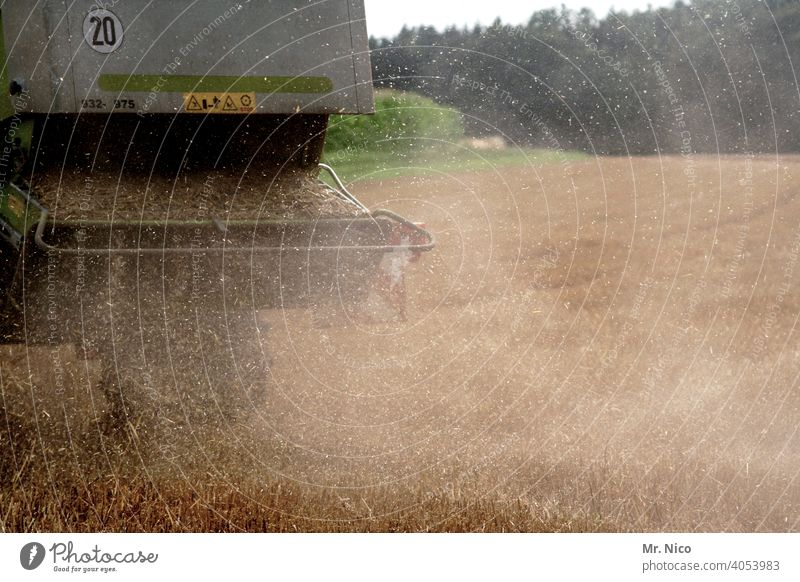 Erntezeit Landwirtschaft Feld Getreide Sommer Natur Getreidefeld Kornfeld Nutzpflanze Ackerbau Weizen Umwelt Ernährung Wachstum Weizenfeld Mähdrescher Maschine